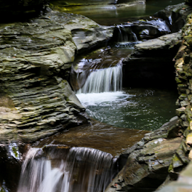 Taking My Time Downhill by Dave Dabour - Nature Up Close Water ( waterfall, watkins glen, water, flowing, jim thorpe,  )