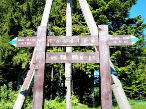 Photo: Z Tobołowa udajemy się na Obidowiec, aby wbić się na czerwony na Turbacz. Gorczański Park Narodowy ma niespotykane oznakowanie, ale trzeba przyznać że oznakowanie jest 5/5.
