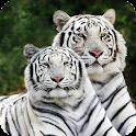 White Tiger Pack 2 Wallpaper icon