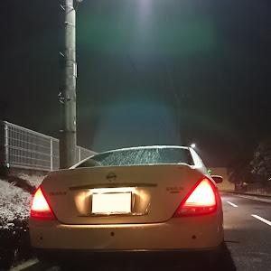 ティアナ TNJ31のカスタム事例画像 shouhei(´・ω・`)さんの2019年02月09日22:31の投稿