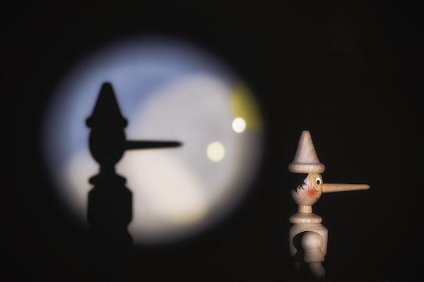 Carissimo Pinocchio... di Barbara Surimi