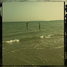 Photo: Summer
