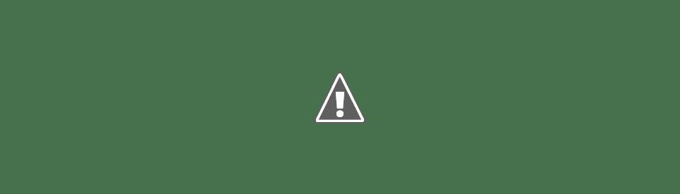 Huerta Colaborativa Comunitaria 2019
