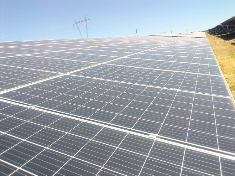 A SA businessman has been arrested in Zimbabwe and his passport confiscated over a dispute regarding the Harava Solar Plant project.