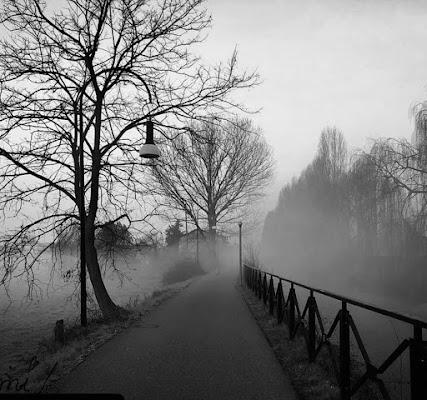 Atmosfera mattutina Martesana  di Marilu2019