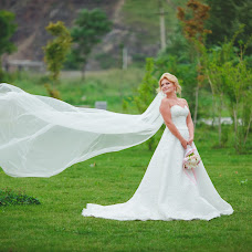 Wedding photographer Irina Stelmakh (DanStel). Photo of 22.10.2015