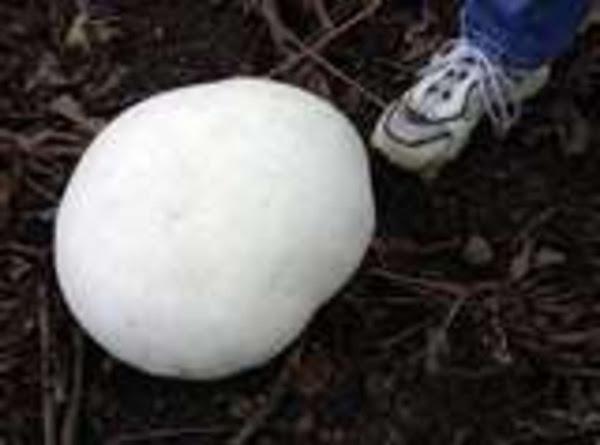 Saute'd Puffball Mushrooms For Mushroom Swiss Burgers Recipe