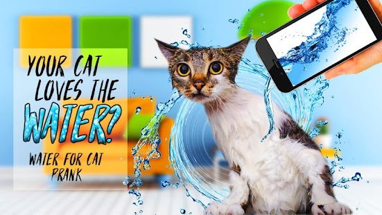Water for cat prank - náhled