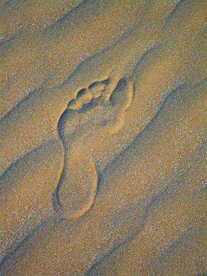 vanishing footprint  di stefano_angeli