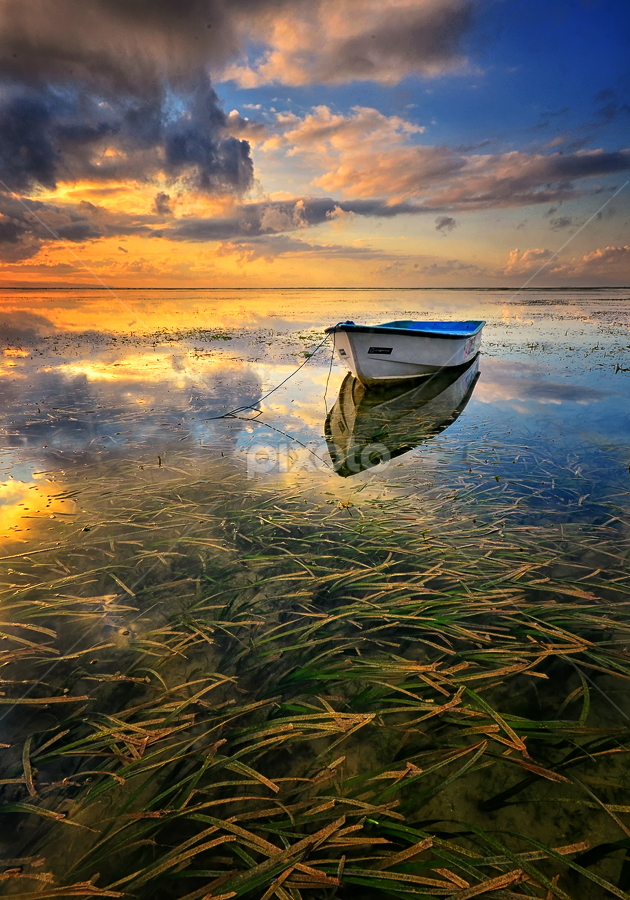 The End of Journey by Hendri Suhandi - Landscapes Sunsets & Sunrises ( clouds, shore, karang, bali, sea weed, indonesia, sanur, mood, sunrise, travel, coast )