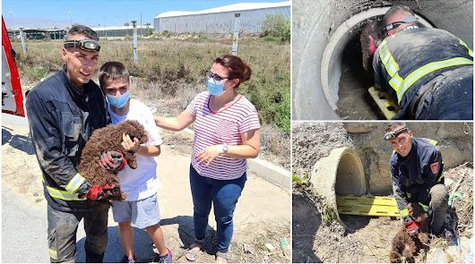 Los bomberos rescatan a un cachorro atrapado en un imbornal de La Cañada