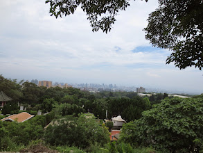 Photo: Taipei in the distance, a wooded neighborhood foreground