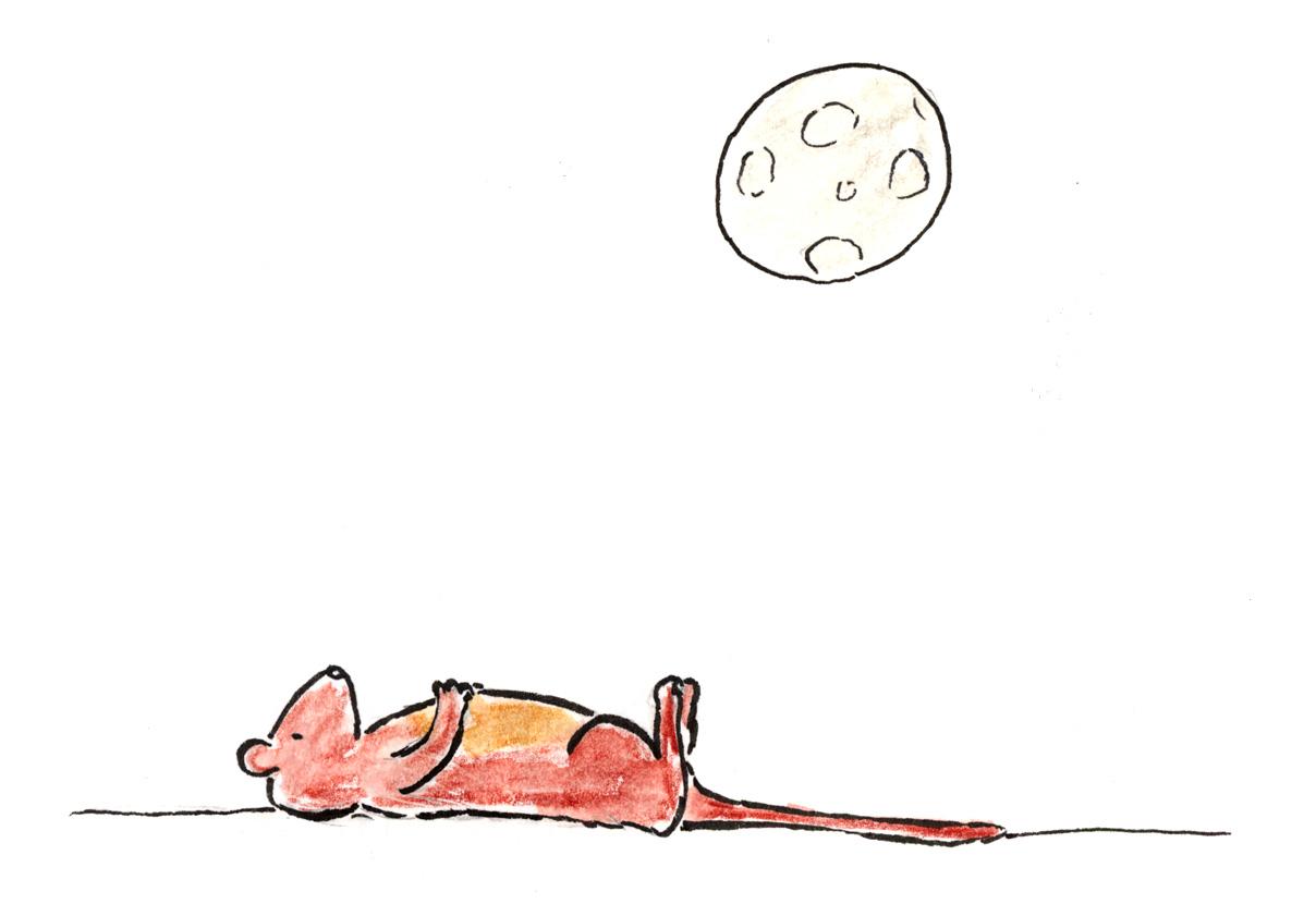 guinevere-moon-2.jpg