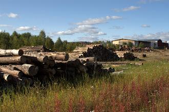 Photo: paikallinen sahalaitos