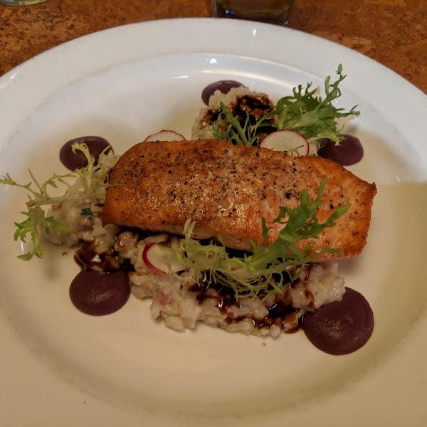 Salmon w risotto