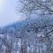 winter colors.jpg