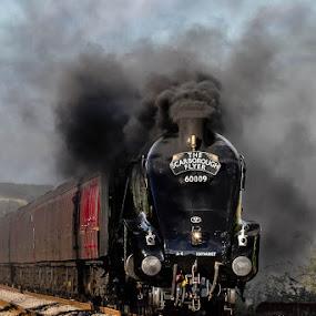 60009 scarborough flyer by Martin Tyson - Transportation Trains ( uk, locomotive, rail, class, train, 60009, a4, steam )