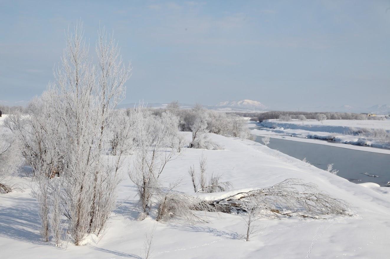 樹氷(2)