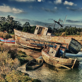 Multi-boats by Emanuel Fernandes - Landscapes Waterscapes ( setubal portugal, boats )