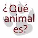 Animal riddles in spanish icon