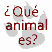 Animal riddles in spanish