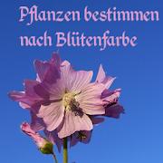 App Icon for Bestimmung nach Blütenfarben App in Czech Republic Google Play Store
