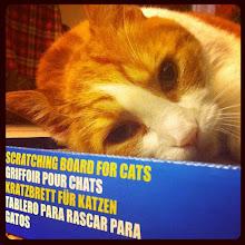 Photo: Enjoying a new scratching board and some catnip! #intercer #portrait #cat #pet #cats #pets #meow #petsofinstagram #beautiful #cute #cutie #animal #picpets #sweet #kitty #kitten #catlovers #eyes #catnip #scratch #nails #relax - via Instagram, http://instagr.am/p/Nfm8MFJfon/