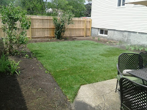Photo: New Sod rolled out after Sandy in Bellmore NY