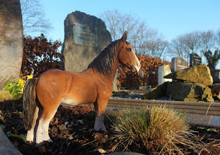 Photo: Op de Algemene begraafplaats