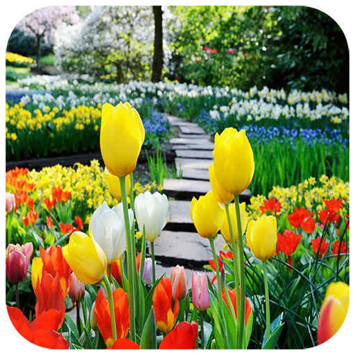 Flower Back Garden Puzzle Android APK Download Free By Godspuzzle