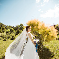 Wedding photographer Aleksandr Litvinov (Zoom01). Photo of 23.11.2017