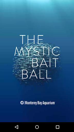 Monterey Aq Mystic Bait Ball