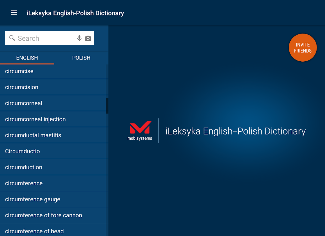 iLeksyka Deluxe English/Polish- screenshot