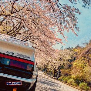 スプリンタートレノ AE86 のカスタム事例画像 eittochi86さんの2019年04月04日15:11の投稿