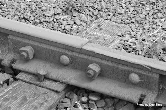 Photo: (Year 2) Day 346 - The Trolley Tracks#2