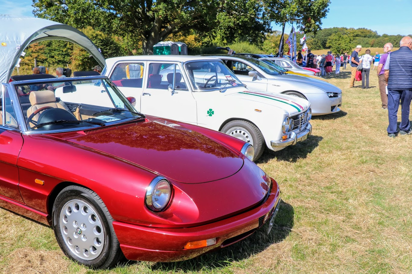 Tenterden Lions Classic Car 2019 Pistons and Paws