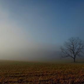 by Kara Brothers - Landscapes Prairies, Meadows & Fields