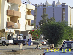 Photo: Die ersten von ganz, ganz vielen Ziegen, die uns begegnen. Hier im Zentrum von Nouakchott.