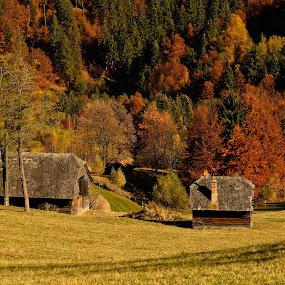 by Lili Screciu - Landscapes Mountains & Hills (  )