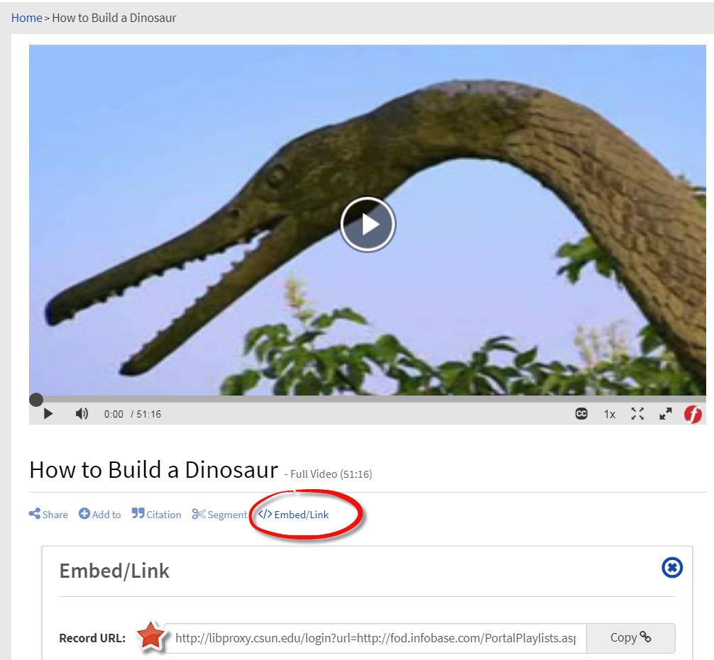 Screenshot of Film on Demand and Permalink