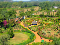 The Garden from Pandav Gufa