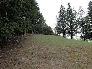 山頂手前の草原