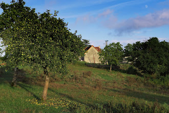 Photo: Moon and Apple Tree in Fages, a hamlet in the hills above SMDV.