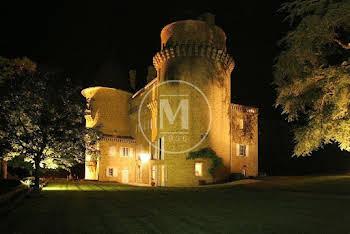 Château 30 pièces 900 m2