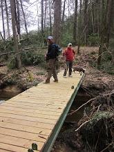 Photo: Bugs' bridge