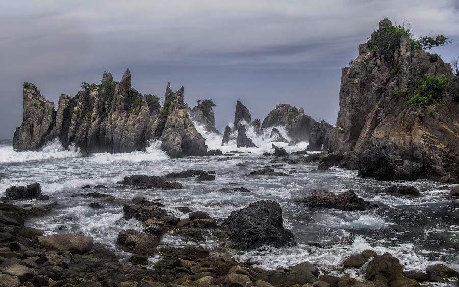 by Jimmy Kohar - Nature Up Close Rock & Stone