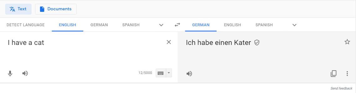 screenshot Google Translate