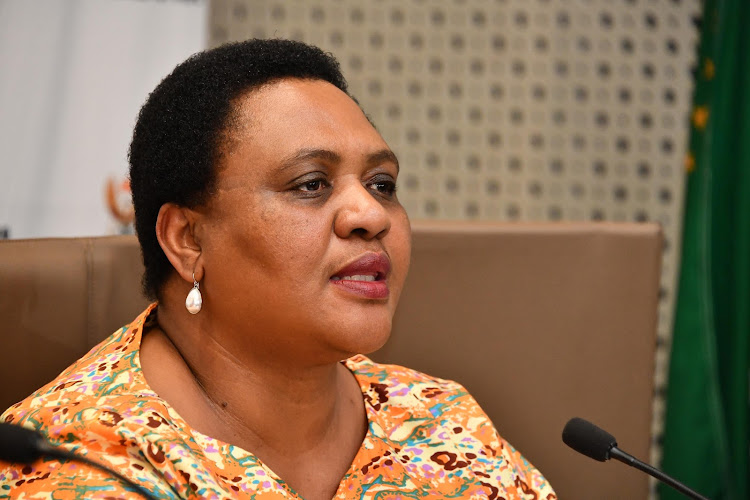 Agriculture, Land Reform and Rural Development Minister Thoko Didiza, accompanied by members of the panel, released the report.