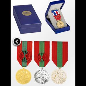 medaille-dhonneur-et-du-travail