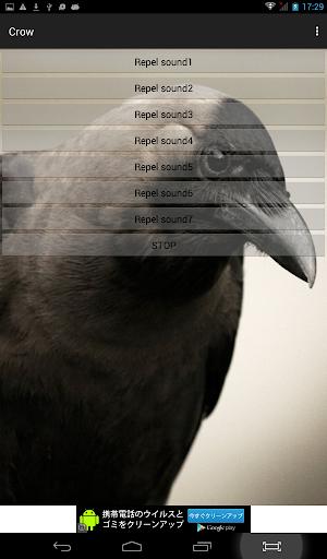 乌鸦击退应用程序